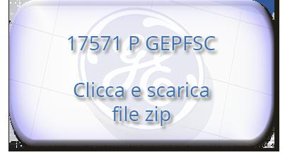 17571 P GEPFSC