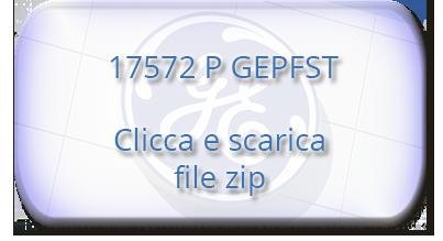 17572 P GEPFST