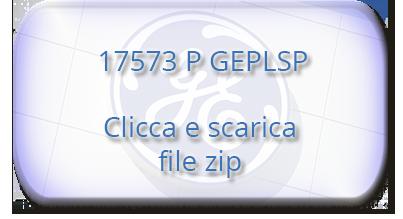 17573 P GEPLSP